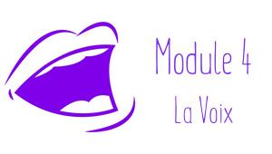 Formation La Voix